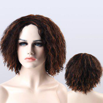 Adiors Highlight Short Fluffy Curly Synthetic Wig
