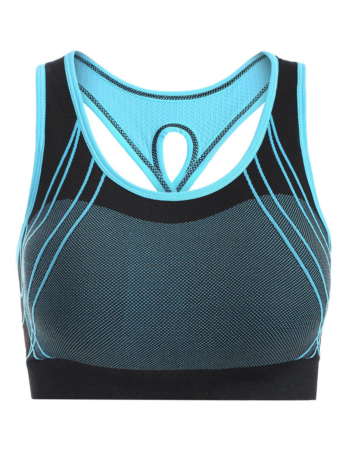 Quick-Dry Criss Cross Shockproof Sports Push Up Bra - BLUE M