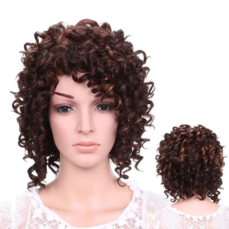 Short Side Bang Afro Curly Fluffy Synthetic WigHair<br><br><br>Color: DEEP BROWN