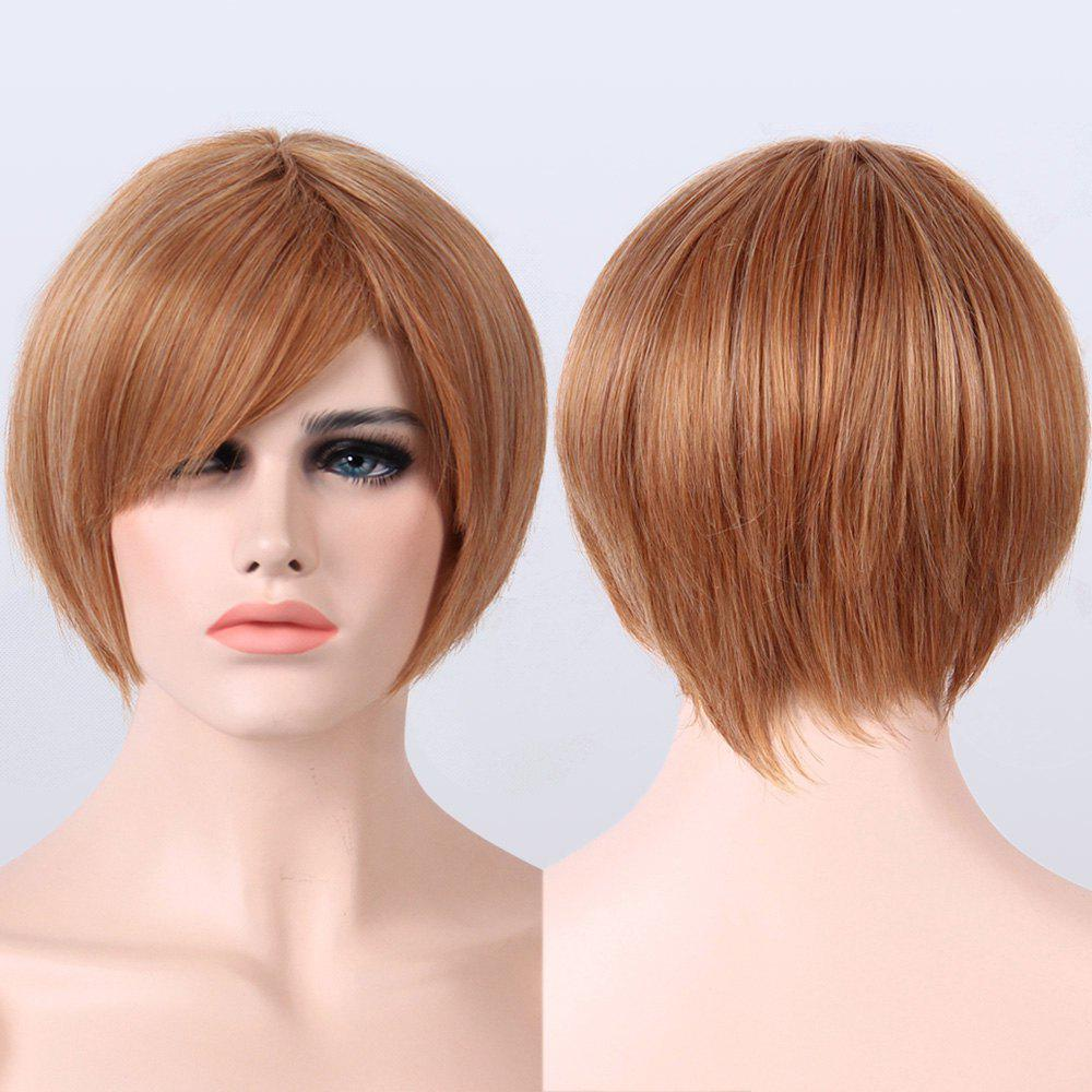 Short Mixed Color Side Bang Capless Straight Synthetic Wig short