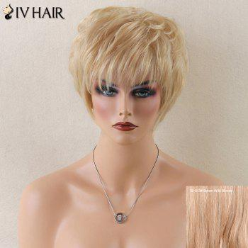 Siv Layered Short Straight Neat Bang Human Hair Wig