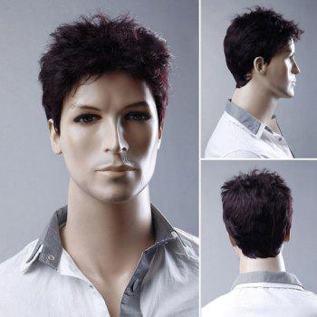 Men's Short Fluffy Straight Synthetic Wig