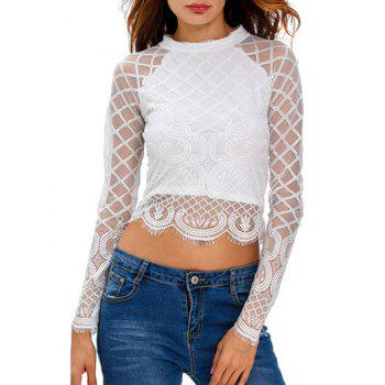Sheer Long Sleeve Zippered Mesh Crop Top T-Shirt