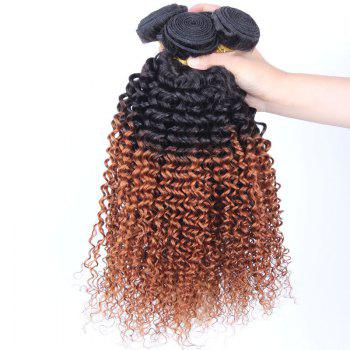 1 Pcs Kinky Curly 6A Virgin Brazilian Double Color Hair Weave - COLORMIX 12INCH