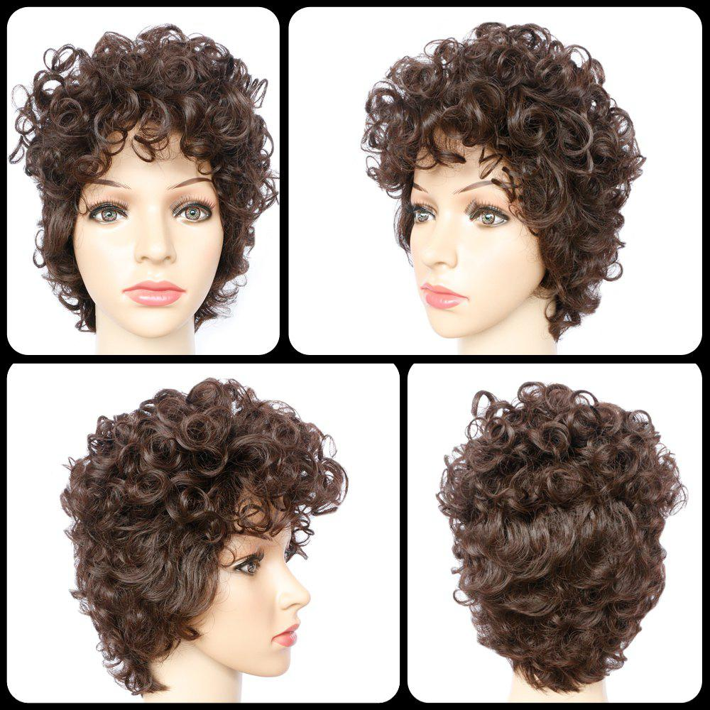 Shaggy Curly Brown Synthetic Trendy Curly Women's Capless Wig