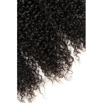 1 Pc/Lot Kinky Curly 5A Remy Brazilian Hair Weave - BLACK BLACK