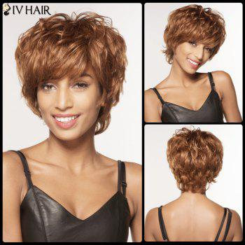 Fascinating Short Fluffy Neat Bang Curly Siv Hair Human Hair Wig