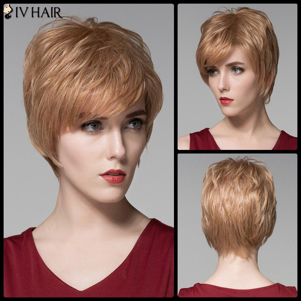 Siv Hair Oblique Bang Short Fluffy Straight Real Natural Hair WigHair<br><br><br>Color: BROWN WITH BLONDE