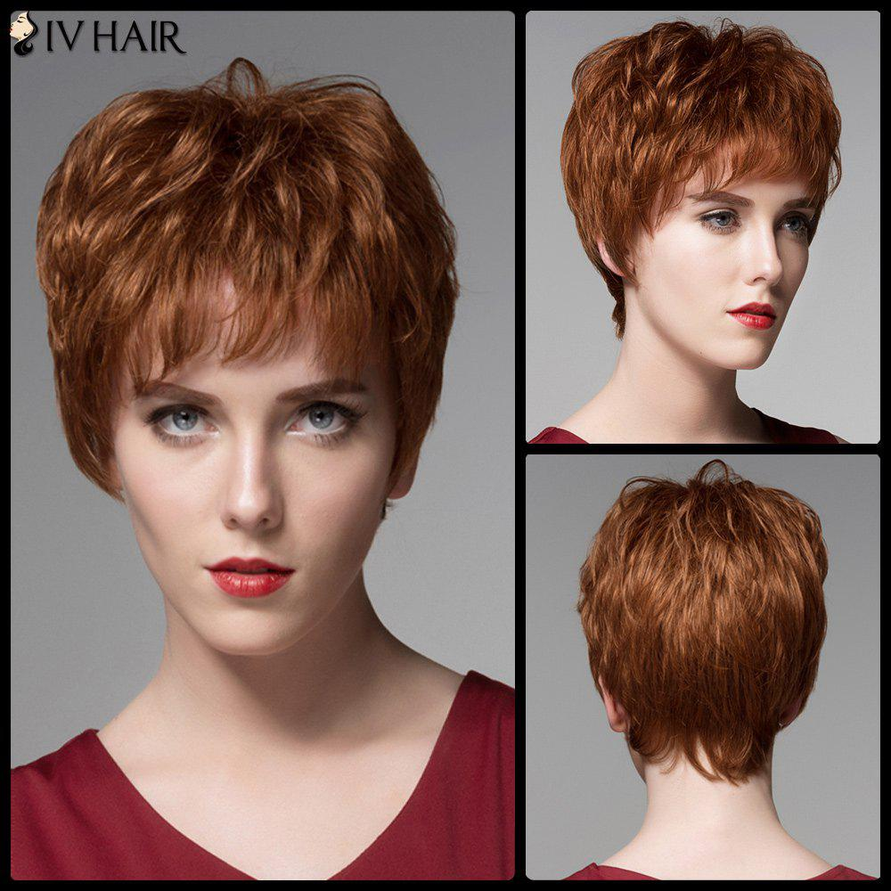Short Neat Bang Bouffant Straight Siv Hair Real Natural Hair Wig - AUBURN BROWN 3