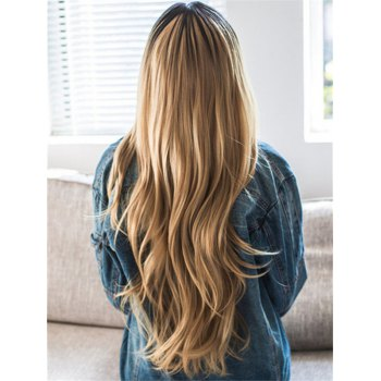 Stunning Women's Natural Straight Long Synthetic Wig - COLORMIX