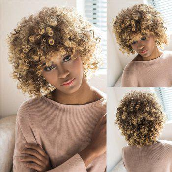 Women's Towheaded Short Afro Curly Mixed Color Side Bang Synthetic Hair Wig