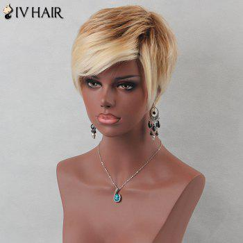 Colormix Fluffy Short Layered Inclined Bang Straight Siv Human Hair Wig -  COLORMIX
