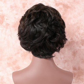 Fashion Short Brown Mixed Capless Fluffy Wave Women's Synthetic Wig - COLORMIX