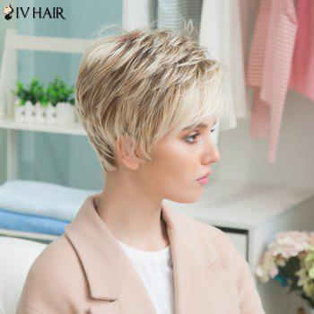Siv Human Hair Short Full Bang Straight Wig - COLORMIX