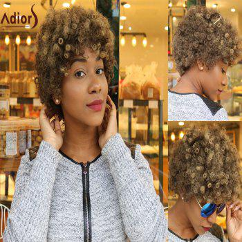 Adiors Colormix Short Afro Curly Synthetic Wig
