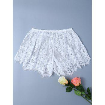 Eyelash Lace Insert Panties