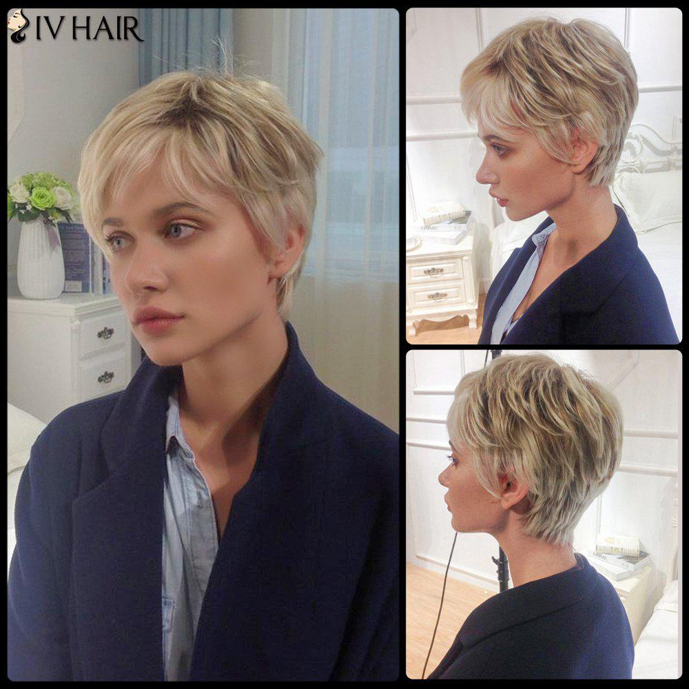 Siv Layered Short Side Bang Straight Human Hair Wig - COLORMIX