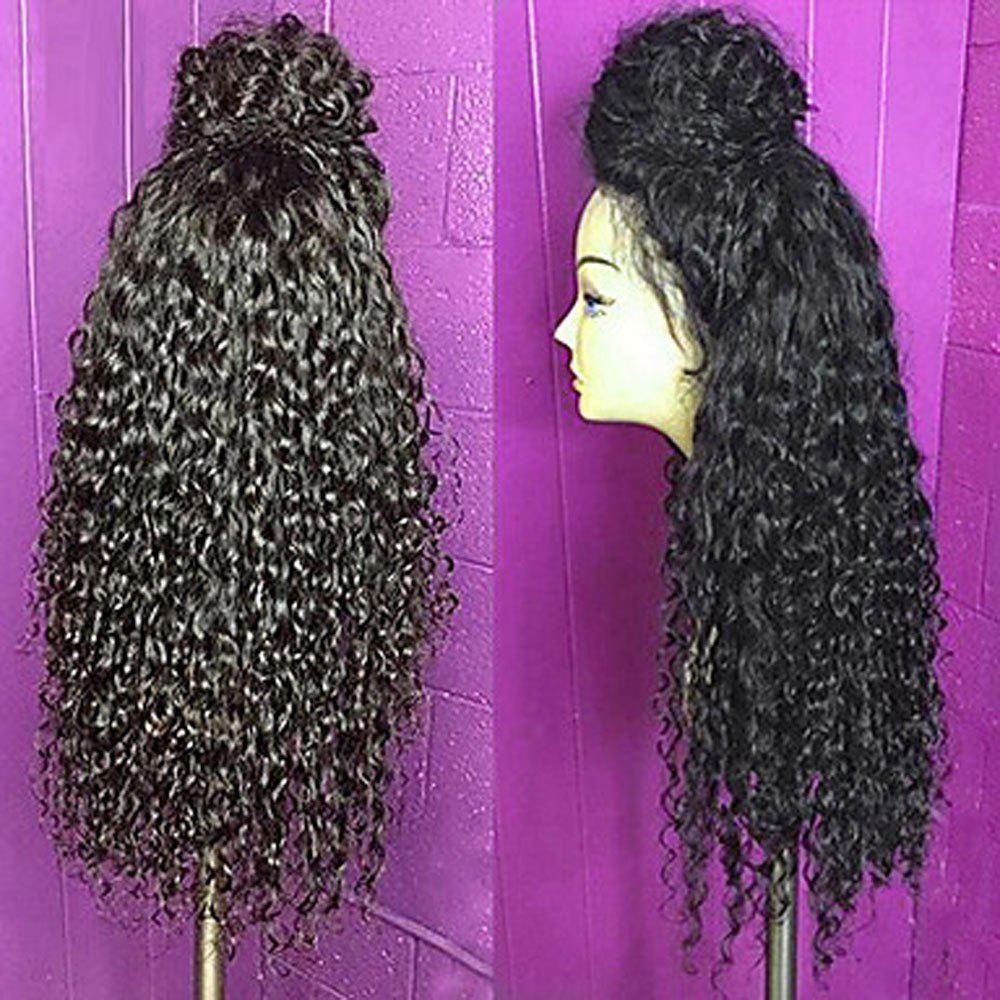 Long Lace Frontal Fluffy Curly Synthetic Wig - BLACK