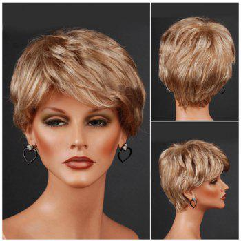 Layered Short Inclined Bang Straight Colormix Synthetic Wig