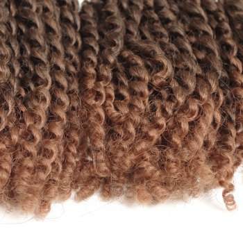Court synthétique Fluffy Curly Hair Extension - Noir et Brun