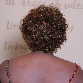 Adiors Short Fluffy Spiffy Afro Curly Synthetic Wig -  COLORMIX