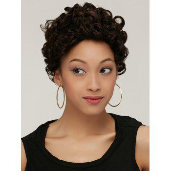 Fashion Boy Cut Short Fluffy Curly Black Brown Synthetic Wig