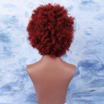 Stylish Color Afro Kinky Curly Short Synthetic Wig For Women - COLORMIX