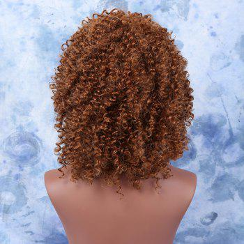 Women's Light Brown Medium Afro Curly Stylish Synthetic Hair Wig -  LIGHT BROWN