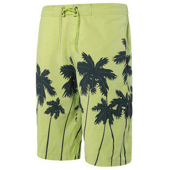 Tie Front Coconut Tree Printed Shorts