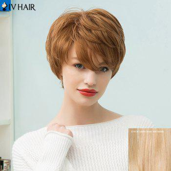Siv Hair Short Capless Layered Human Hair Wig