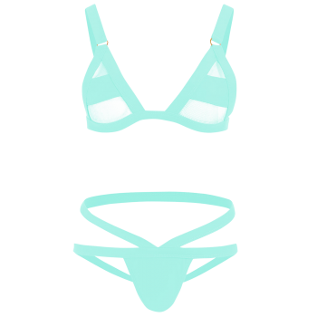 Banded Mesh Panel Bikini Set