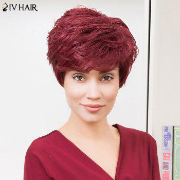 Siv Hair Short Layered Hairstyle Fluffy Capless Human Hair Wig