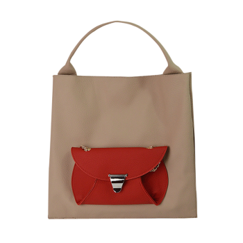 Tote Bag and Removable Envelope Bag