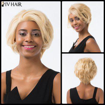 Siv Hair Short Layered Cut Fluffy Lace Front Human Hair Wig - GOLDEN BROWN WITH BLONDE GOLDEN BROWN/BLONDE