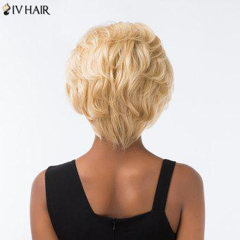 Siv Hair Short Layered Cut Fluffy Lace Front Human Hair Wig -  GOLDEN BROWN/BLONDE