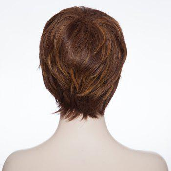 Trendy Synthetic Brown Mixed Fluffy Short Curly Side Bang Elegant Women's Capless Wig -  COLORMIX