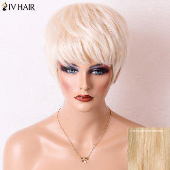 Siv Hair Short Layered Cut Straight Neat Bang Human Hair Wig - GOLDEN BROWN WITH BLONDE GOLDEN BROWN/BLONDE