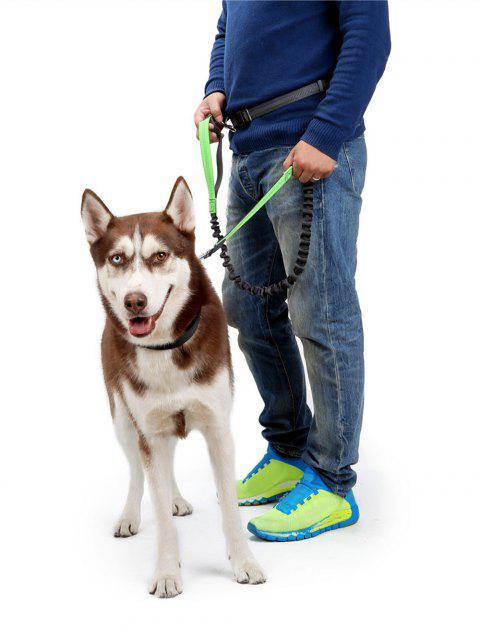 Nylon Running Belt Bungee Leash Pet Dog Traction Rope - GREEN M