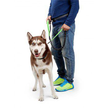 Nylon Running Belt Bungee Leash Pet Dog Traction Rope