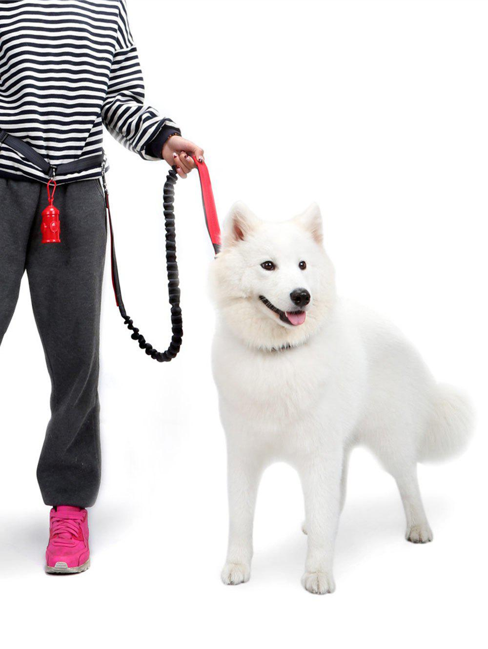 Nylon Running Belt Bungee Leash Pet Dog Traction Rope - RED M