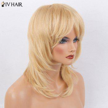 Siv Hair Medium Side Bang Straight Layered Tail Adduction Perruque de cheveux humains - / Brown d'Or avec Blonde