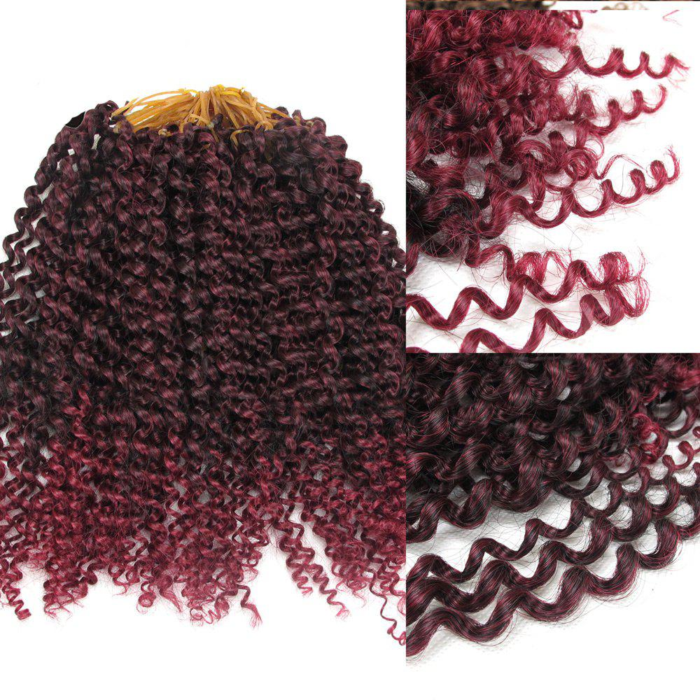 Shaggy Jerry Curl Afro Synthetic Hair Extension - BORDEAUX