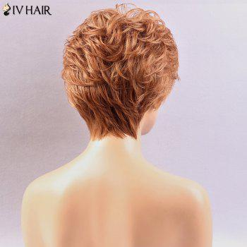 Siv Hair Side Bang Layered Shaggy Slightly Short Curly Human Hair Wig -  AUBURN BROWN