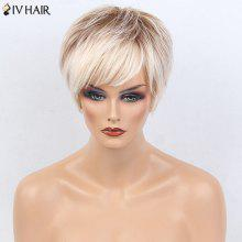 Siv Hair Short Layered Silky Straight Side Bang Colormix Human Hair Wig