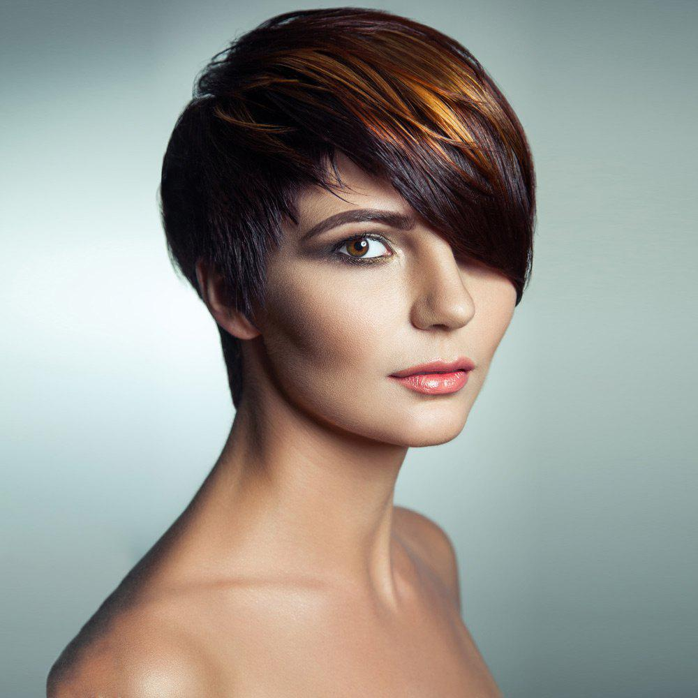 Dull Rayon Short Side Bang Straight Pixie Highlight Synthetic Wig - COLORMIX