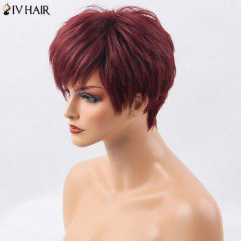 Siv Hair Short Incliné Bang Shaggy Layered Straight Hair Hair Wig - Rouge vineux