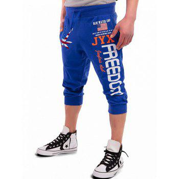Patriotic Leaf Graphic Print Drawstring Cropped Joggers - ROYAL XL