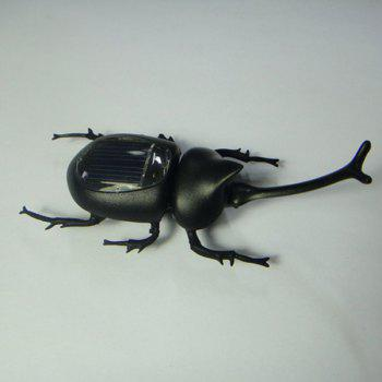 Solar Unicorn Beetle -  BLACK