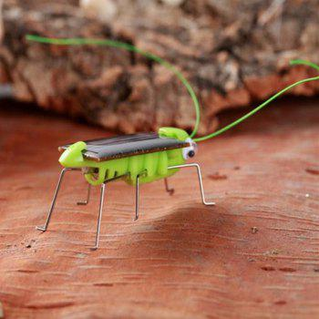 Frightened Kit Solar Powered Grasshopper - GREEN GREEN