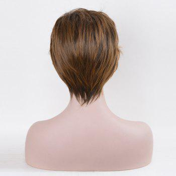 Short Oblique Bang Straight Newt Scamander Cosplay Synthetic Wig - BROWN